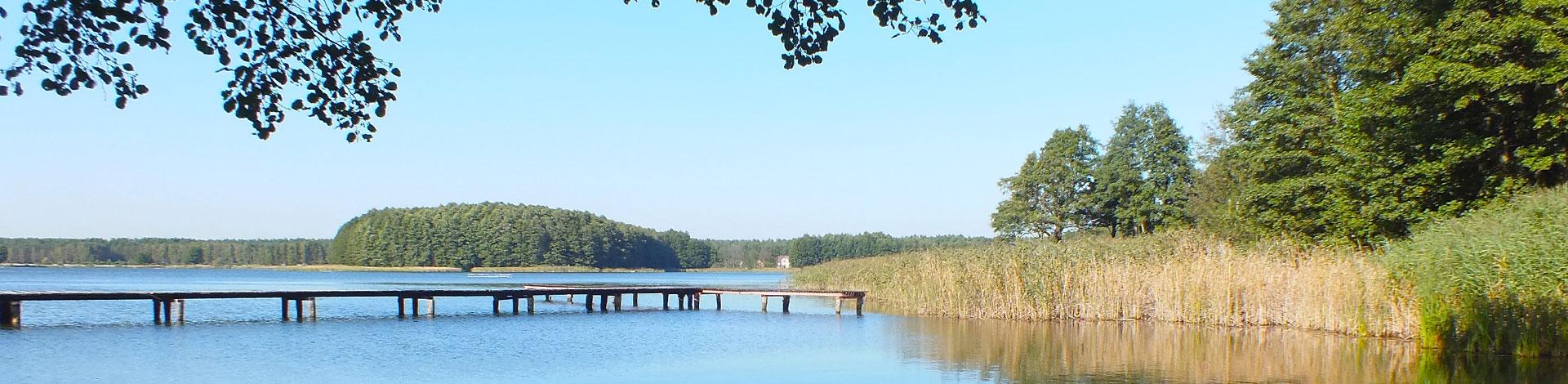Zdjęcie przedstawia jezioro i pomost otoczone drzewami